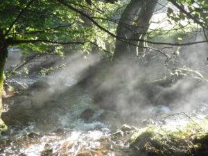 The Cwm mist